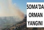 SOMA'DA ORMAN YANGINI