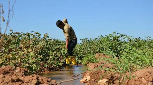 Binlerce çiftçinin elektrik borcuna yapılandırma