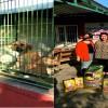 Hayvanları Koruma Günü´nde bakım evine ziyaret