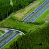 Soma'ya Yapılacak Köprü İle habitat bölünmesinin önüne geçilecek