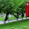 """""""Çukur Park""""a MHP'den Destek"""